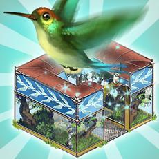 Alle Vögel sind schon da – in My Free Zoo