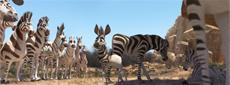 """""""KHUMBA - Das Zebra ohne Streifen am Popo"""""""
