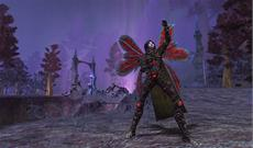 EverQuest II startet Heroische Charaktere