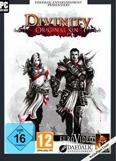 Divinity: Original Sin im Early Access Programm von Steam mit Multiplayer