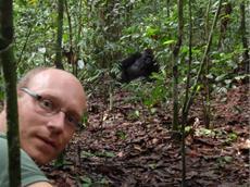 Tarzan 3D: Gespräch mit dem WWF-Afrika-Experten Johannes Kirchgatter über Regenwälder, ihre Bedrohung und ihren Schutz
